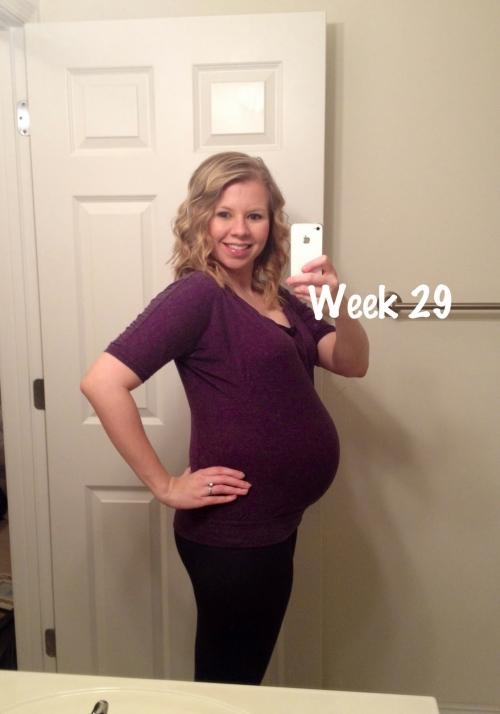 Животы на 29 недели беременности