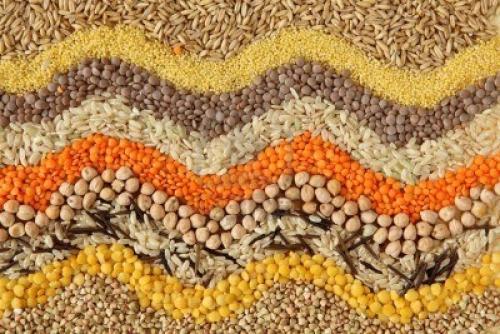 Полезные семечки и семена