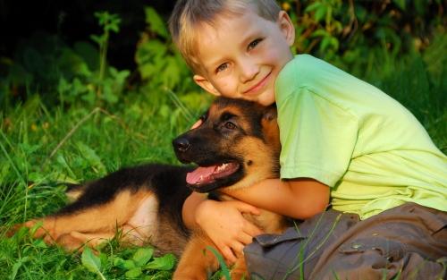 Какие питомцы полностью безопасны для вашего ребенка?