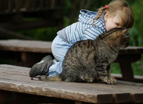 Какое животное купить своему ребенку?