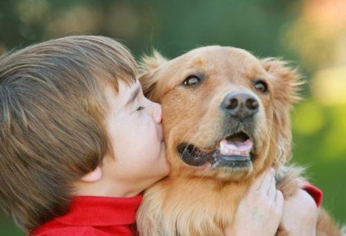 Поговорим о том, почему общение ребенка с животными полезно