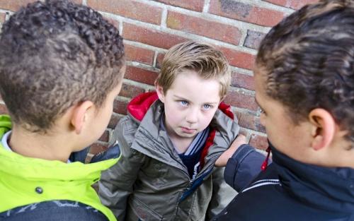 Нужно ли учить ребенка заступаться за других детей?
