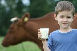 О бактериальных инфекциях у ребенка, которые передаются от животных