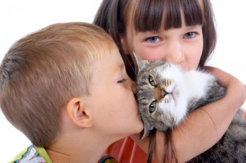 О некоторых полезных свойствах домашних животных